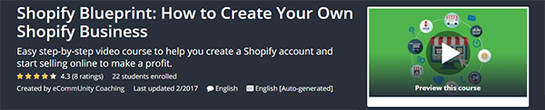 Shopify Blueprint: How to Create Your Own Shopify Business